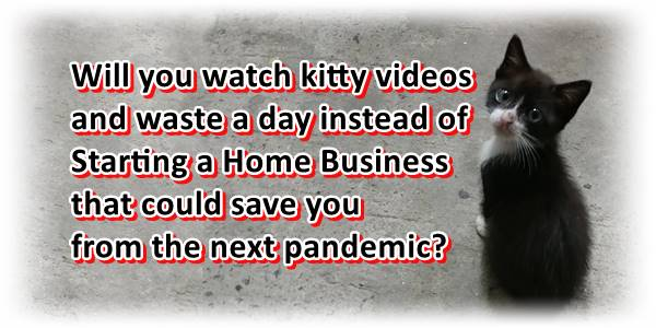 Consider starting a home business over watching kitten videos.